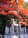 Himure_sinnme_3