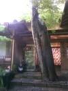 Yusaitei_gennkann
