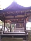 Kourasha_honden