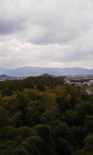 Nara_miminasiyama