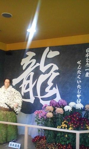 24_kiku_ryoumasan