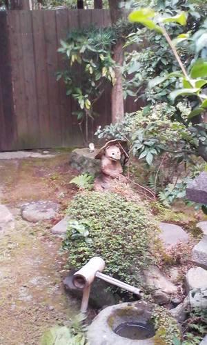 Sibasebsei_koushukai_niwanotanuki