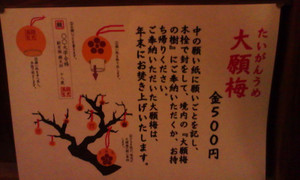 8_nisikitenmangu_taiganume_setumei