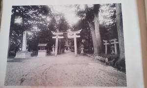 Taishou_okajinjya_tori