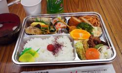 Iwagami_obentou