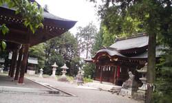 Ajisai_omiyasan