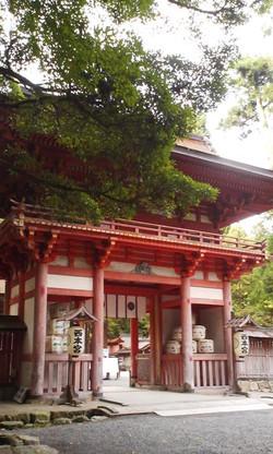 Hiyositaisha_nisihongu