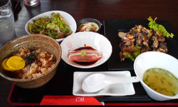 Ohanami_gohan