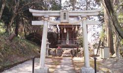 Ohanami_omiyasan